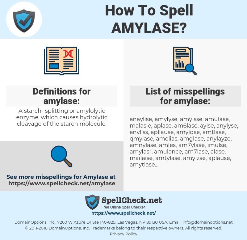 amylase, spellcheck amylase, how to spell amylase, how do you spell amylase, correct spelling for amylase