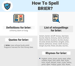 brier, spellcheck brier, how to spell brier, how do you spell brier, correct spelling for brier
