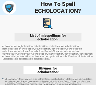echolocation, spellcheck echolocation, how to spell echolocation, how do you spell echolocation, correct spelling for echolocation