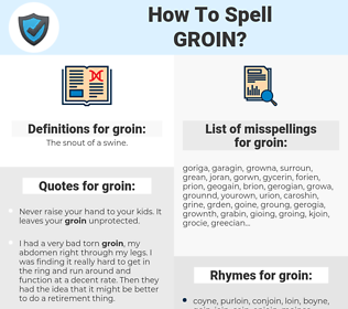 groin, spellcheck groin, how to spell groin, how do you spell groin, correct spelling for groin