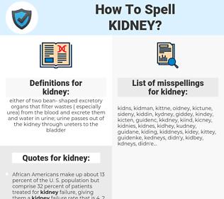 kidney, spellcheck kidney, how to spell kidney, how do you spell kidney, correct spelling for kidney