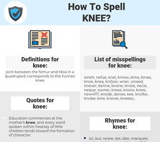 knee, spellcheck knee, how to spell knee, how do you spell knee, correct spelling for knee