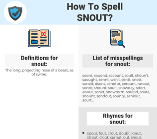 snout, spellcheck snout, how to spell snout, how do you spell snout, correct spelling for snout