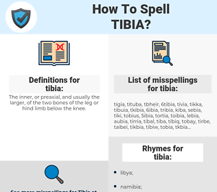 tibia, spellcheck tibia, how to spell tibia, how do you spell tibia, correct spelling for tibia