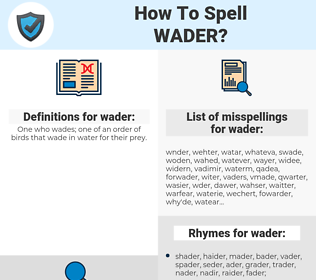 wader, spellcheck wader, how to spell wader, how do you spell wader, correct spelling for wader