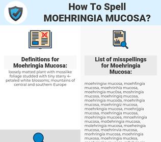 Moehringia Mucosa, spellcheck Moehringia Mucosa, how to spell Moehringia Mucosa, how do you spell Moehringia Mucosa, correct spelling for Moehringia Mucosa