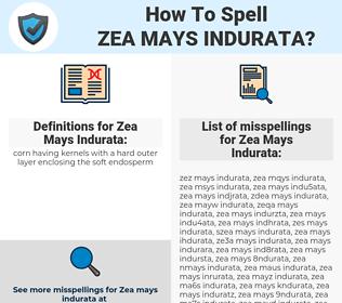 Zea Mays Indurata, spellcheck Zea Mays Indurata, how to spell Zea Mays Indurata, how do you spell Zea Mays Indurata, correct spelling for Zea Mays Indurata