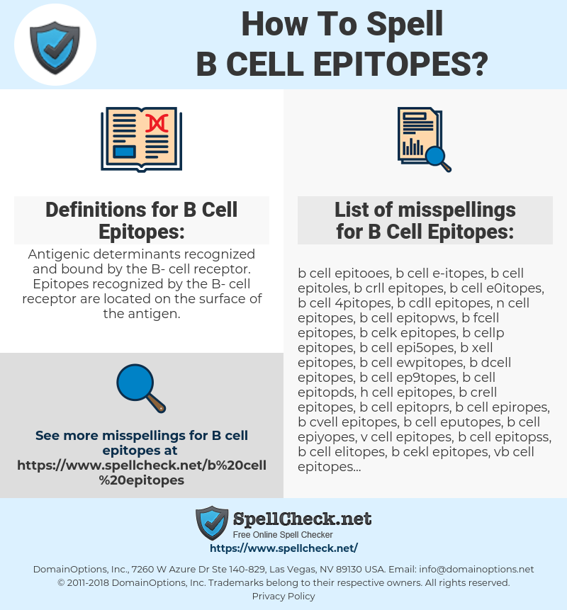 B Cell Epitopes, spellcheck B Cell Epitopes, how to spell B Cell Epitopes, how do you spell B Cell Epitopes, correct spelling for B Cell Epitopes