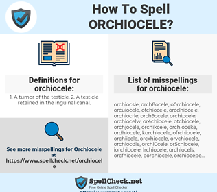 orchiocele, spellcheck orchiocele, how to spell orchiocele, how do you spell orchiocele, correct spelling for orchiocele