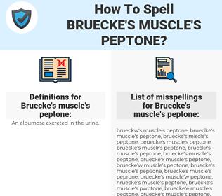 Bruecke's muscle's peptone, spellcheck Bruecke's muscle's peptone, how to spell Bruecke's muscle's peptone, how do you spell Bruecke's muscle's peptone, correct spelling for Bruecke's muscle's peptone