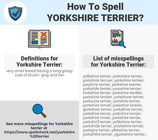 Yorkshire Terrier, spellcheck Yorkshire Terrier, how to spell Yorkshire Terrier, how do you spell Yorkshire Terrier, correct spelling for Yorkshire Terrier