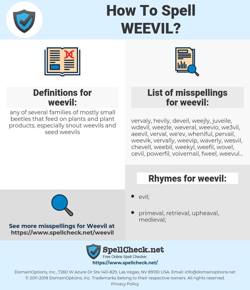 weevil, spellcheck weevil, how to spell weevil, how do you spell weevil, correct spelling for weevil