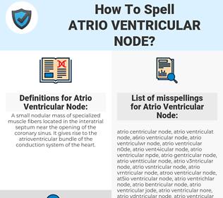 Atrio Ventricular Node, spellcheck Atrio Ventricular Node, how to spell Atrio Ventricular Node, how do you spell Atrio Ventricular Node, correct spelling for Atrio Ventricular Node