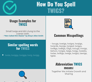 Correct spelling for twigs