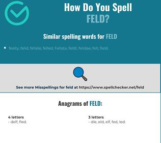 Correct spelling for feld
