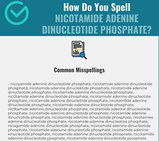 Correct spelling for nicotamide adenine dinucleotide phosphate