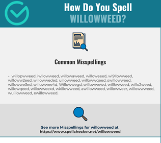 Correct spelling for Willowweed