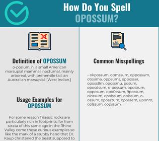Correct spelling for opossum