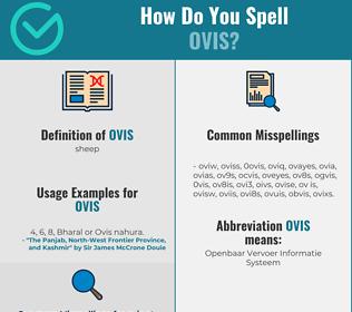 Correct spelling for ovis