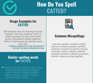 Correct spelling for catted