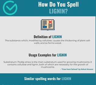Correct spelling for lignin