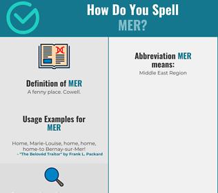 Correct spelling for MER