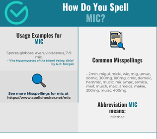 Correct spelling for MIC