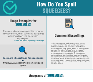 Correct spelling for squeegees