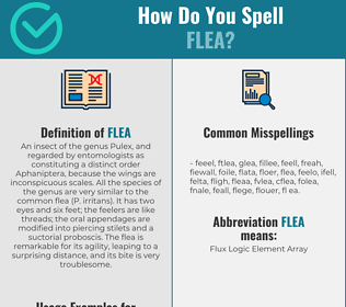 Correct spelling for flea