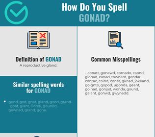 Correct spelling for gonad