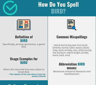 Correct spelling for bird
