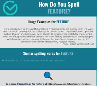 Correct spelling for feature