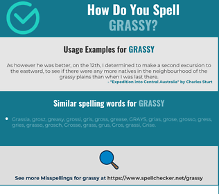 Correct spelling for grassy