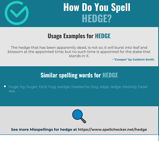 Correct spelling for hedge