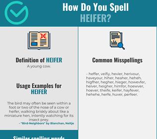 Correct spelling for heifer