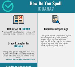 Correct spelling for iguana