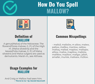Correct spelling for mallow