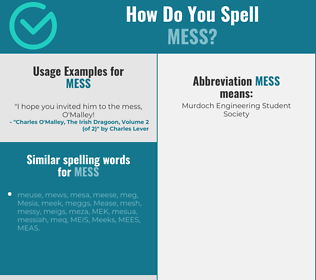 Correct spelling for mess