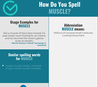 Correct spelling for muscle