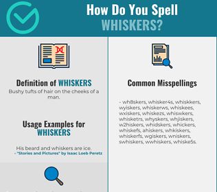 Correct spelling for whiskers