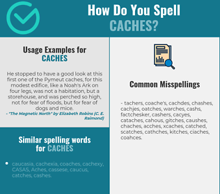 Correct spelling for caches