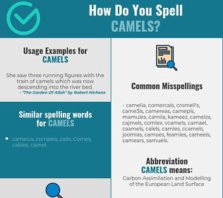 Correct spelling for camels