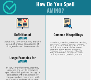 Correct spelling for amino