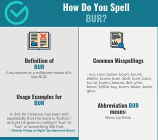 Correct spelling for bur