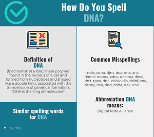 Correct spelling for dna