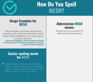 Correct spelling for mesh