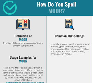 Correct spelling for moor