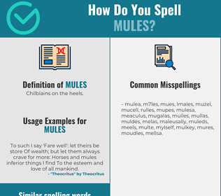 Correct spelling for mules