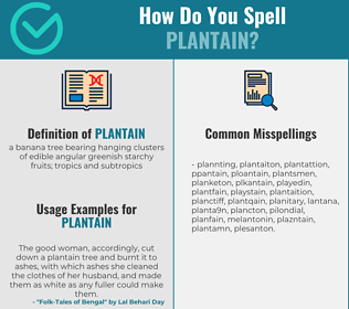 Correct spelling for plantain