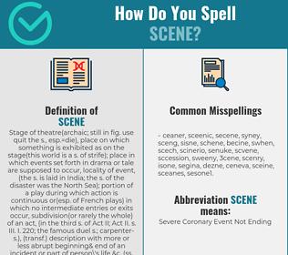 Correct spelling for scene